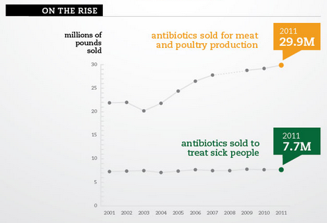 Antibiotic Use In Meat Industry At An All-time High
