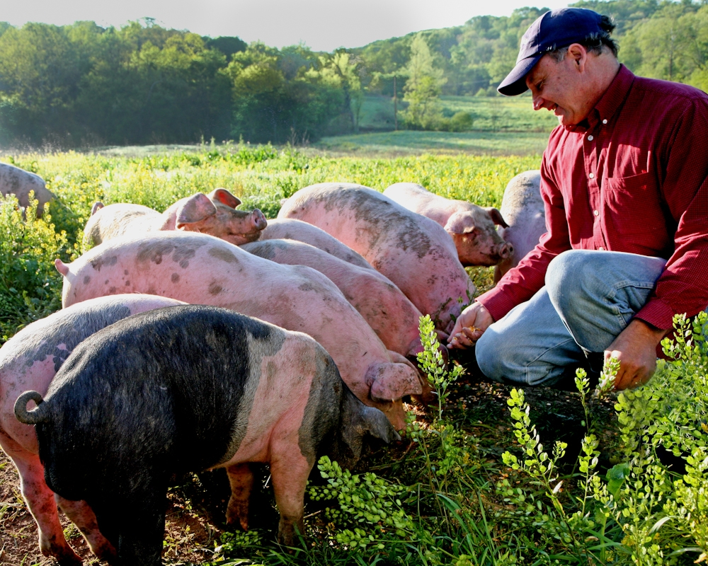 Editorial Regarding Antibiotic Resistance Highlights Hog Farmer Russ Kremer